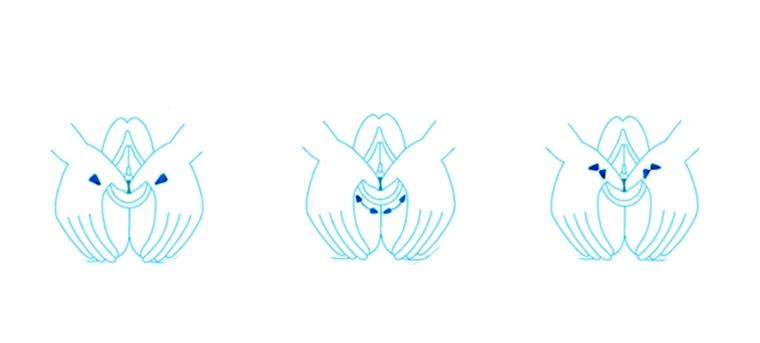 urutan-perineal-